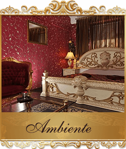 5 sterne haus ingolstadt franzis haus. Black Bedroom Furniture Sets. Home Design Ideas